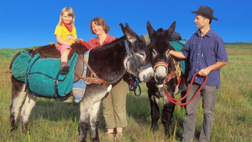 Damals: 2008 war Familie Himmel mit ihren Eseln auf dem Jakobsweg unterwegs.