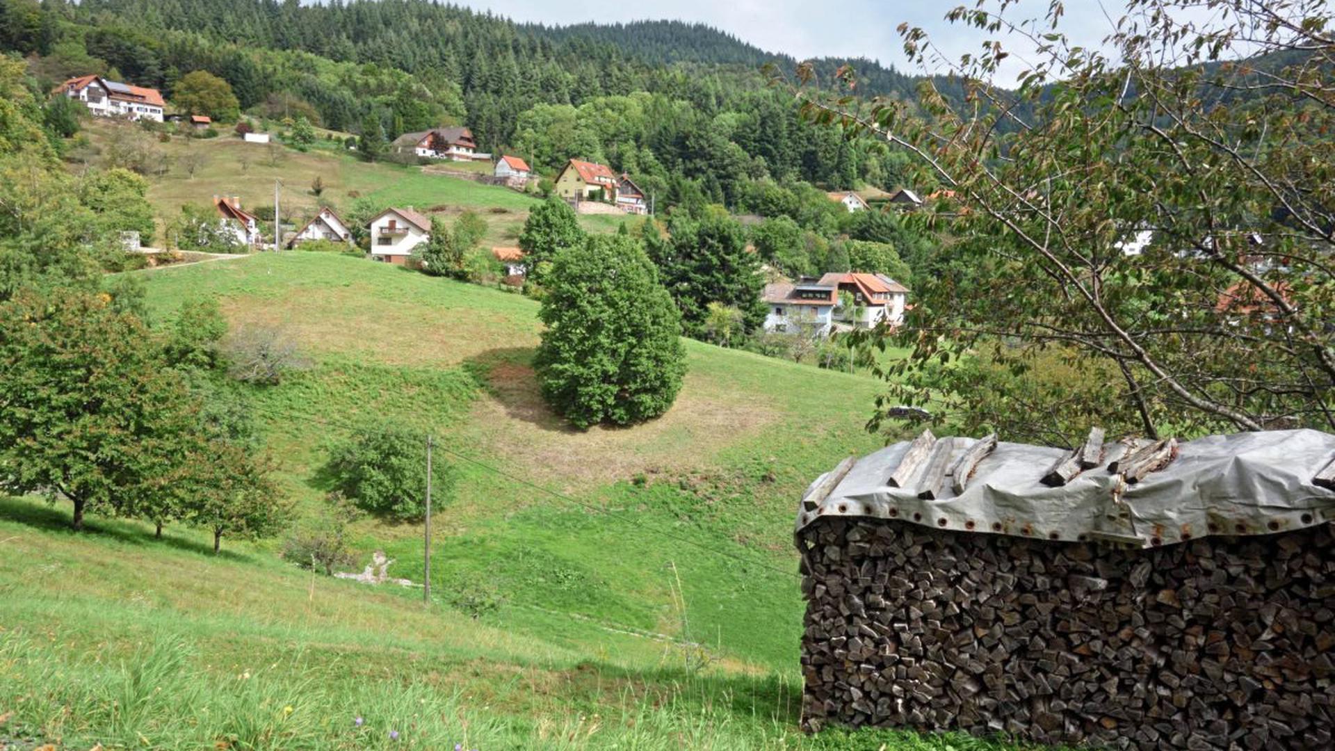 Im malerischen Obertal spielte sich das Beziehungsdrama in einem Einfamilienhaus in Bühlertal ab. Die Nachbarn berichten von zunächst geklärten Verhältnissen zwischen den beiden jungen Menschen.