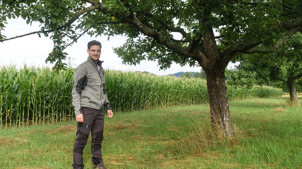 Junger Mann steht unter einem alten Obstbaum und blickt in die Kamera