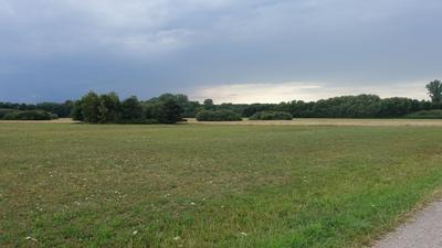 Blick in eine weite Landschaft mit Wiesen,  Gehölzinseln und Wald.