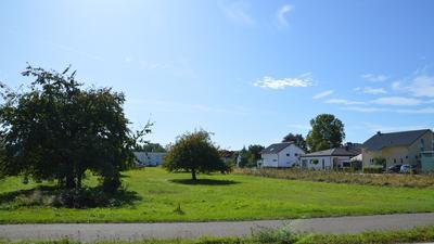 Bäume, dazwischen Seniorenwohnheim, rechte Seite Bebauung mit Häusern