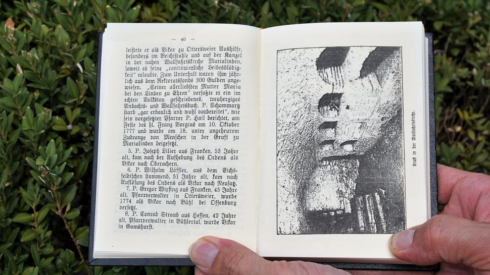 Blick in Buch