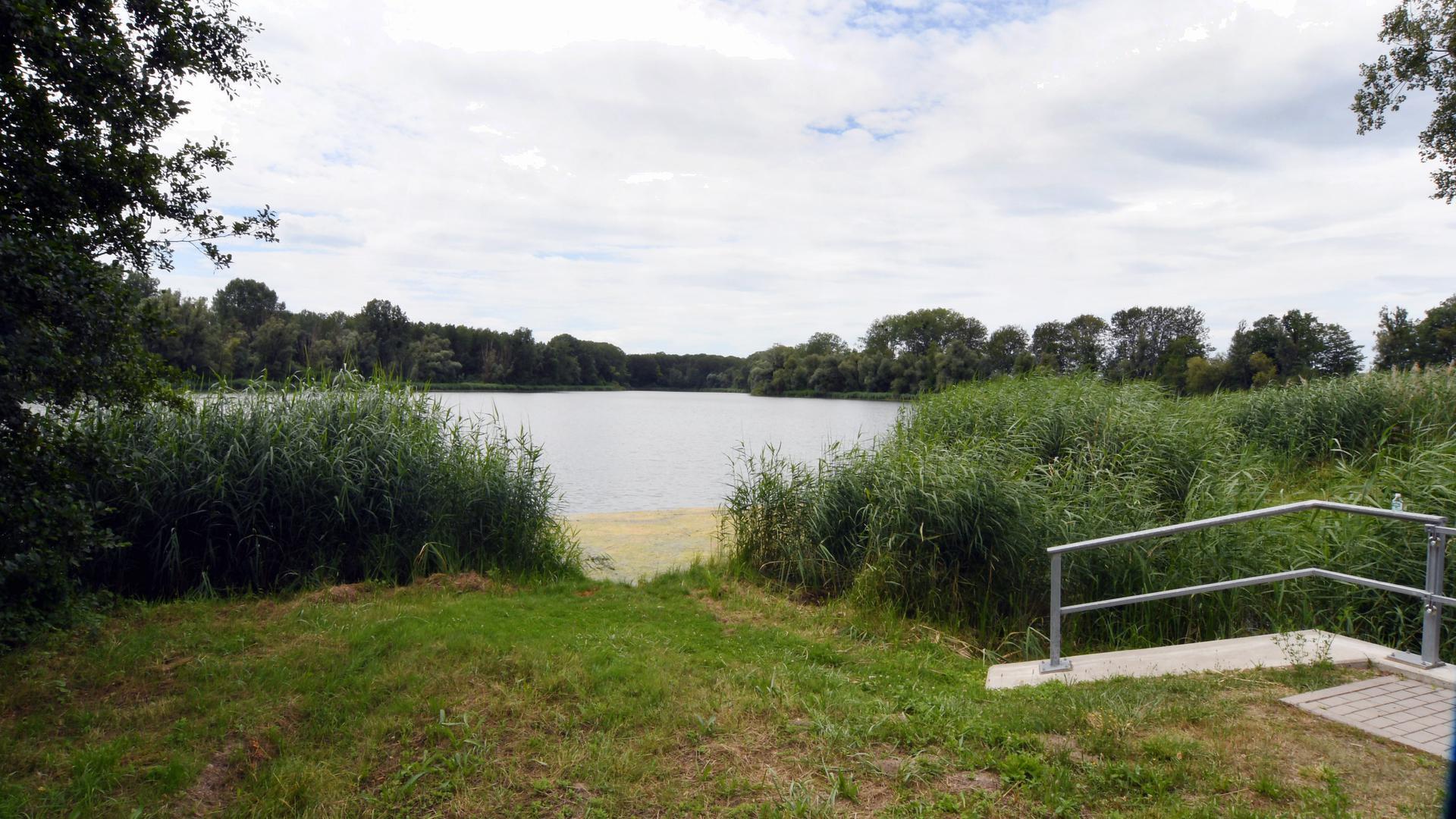 Bachgrundsee Rheinmünster