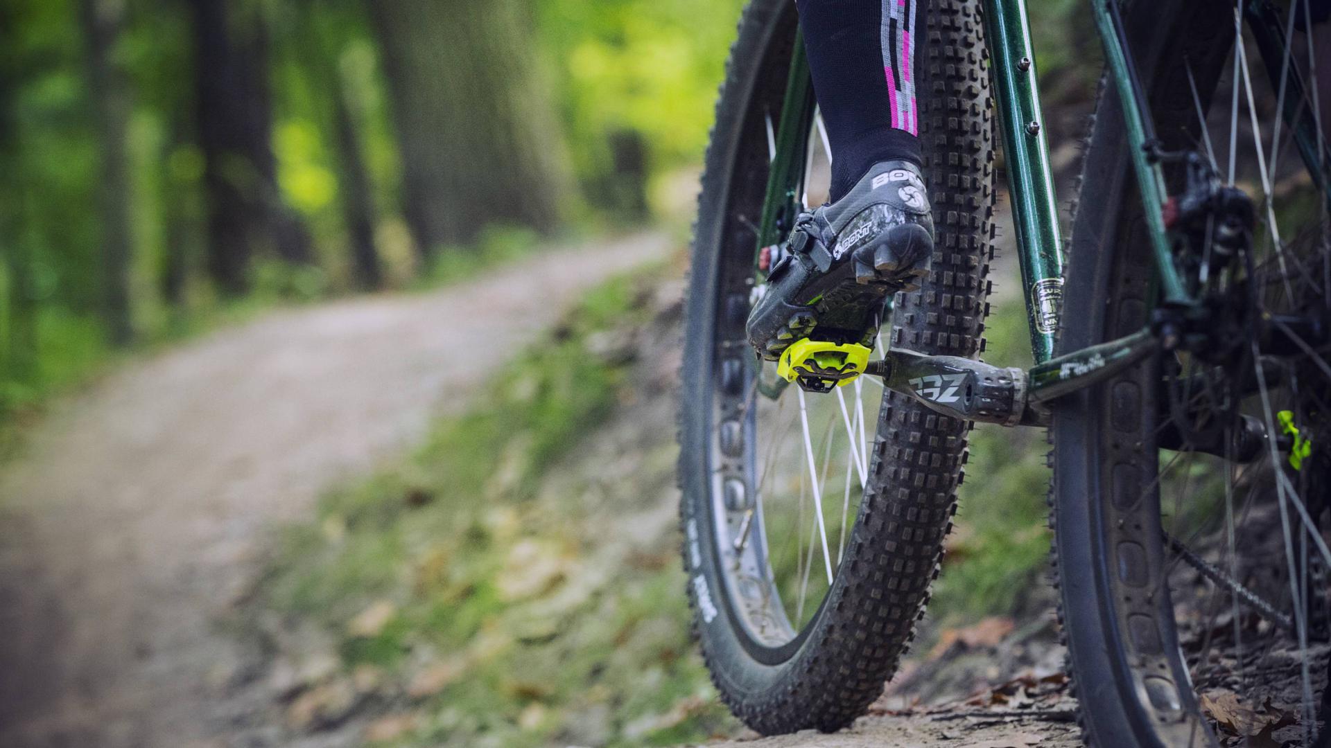 Asschnitt: Vorderrad eines Fahrrads auf einem Waldweg