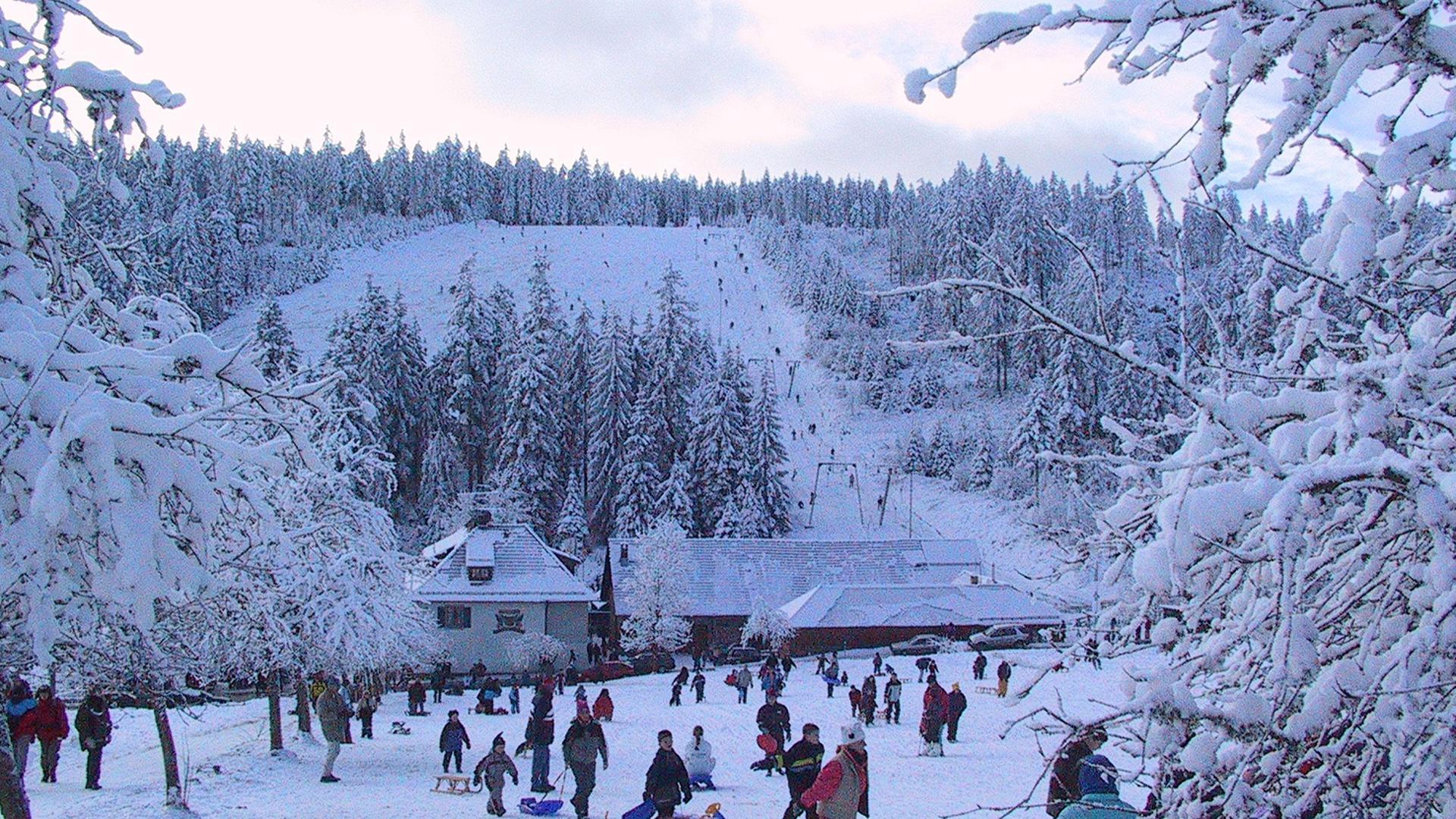 Skifahren und Rodeln auf dem Kaltenbronn