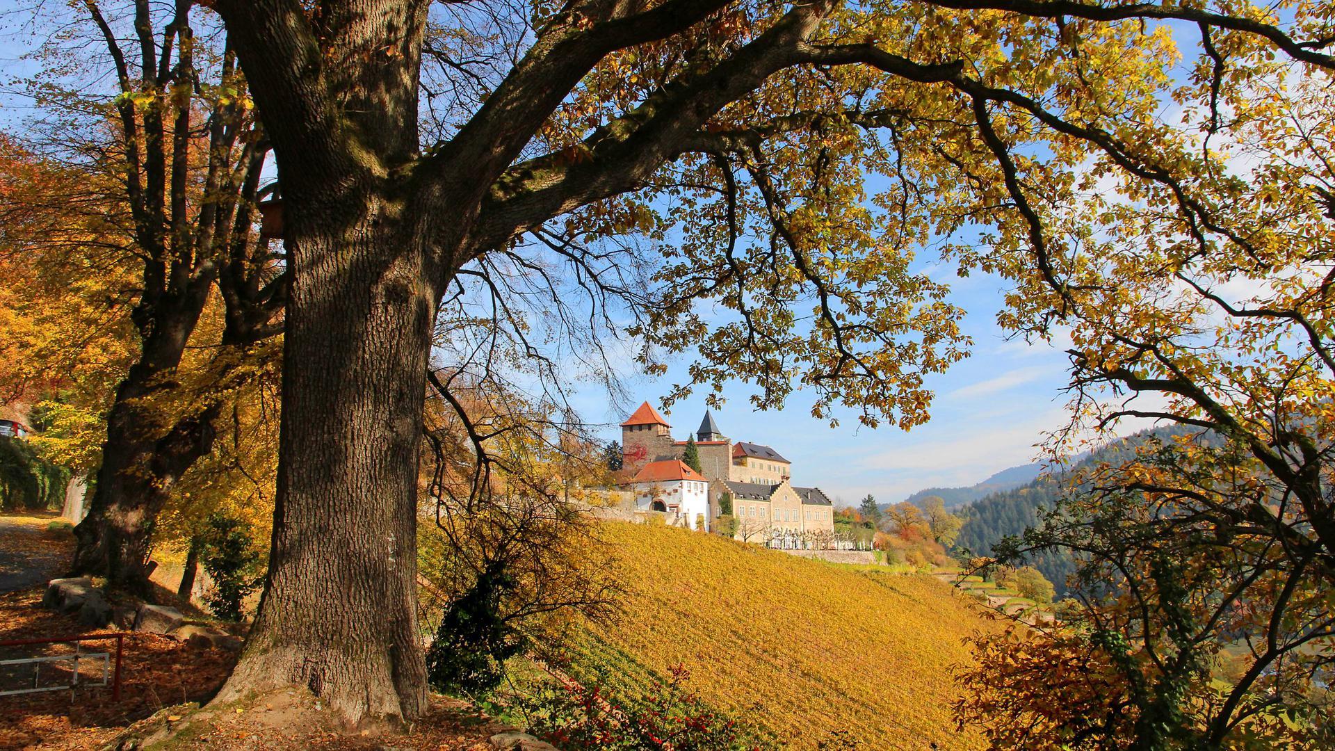 Schoss Eberstein im warmen Licht der Herbstsonne, Foto vom 04.11.2018
