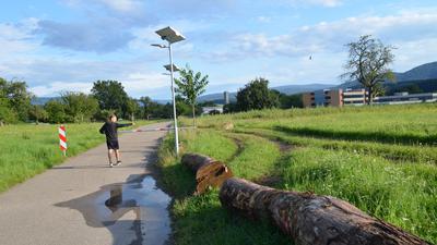 Hubstraße Bad Rotenfels, Schranke, Wiese und Baumstämme