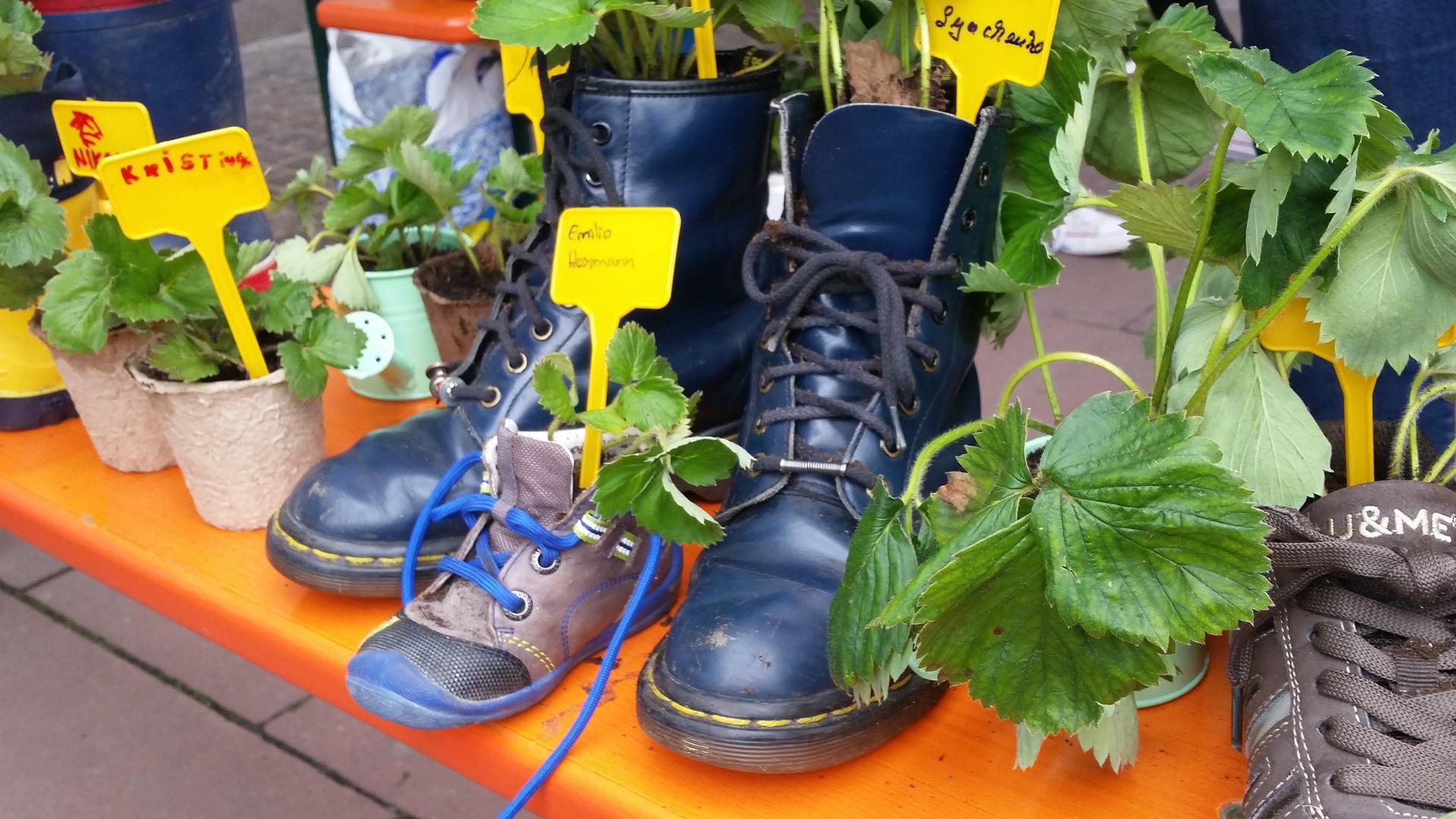 Schuhe und Blumen