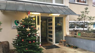 Eingangsbereich Fischerhaus Michelbach mit Weihnachtsbaum