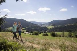 Zwei Wanderer in einem Schwarzwald-Tal.