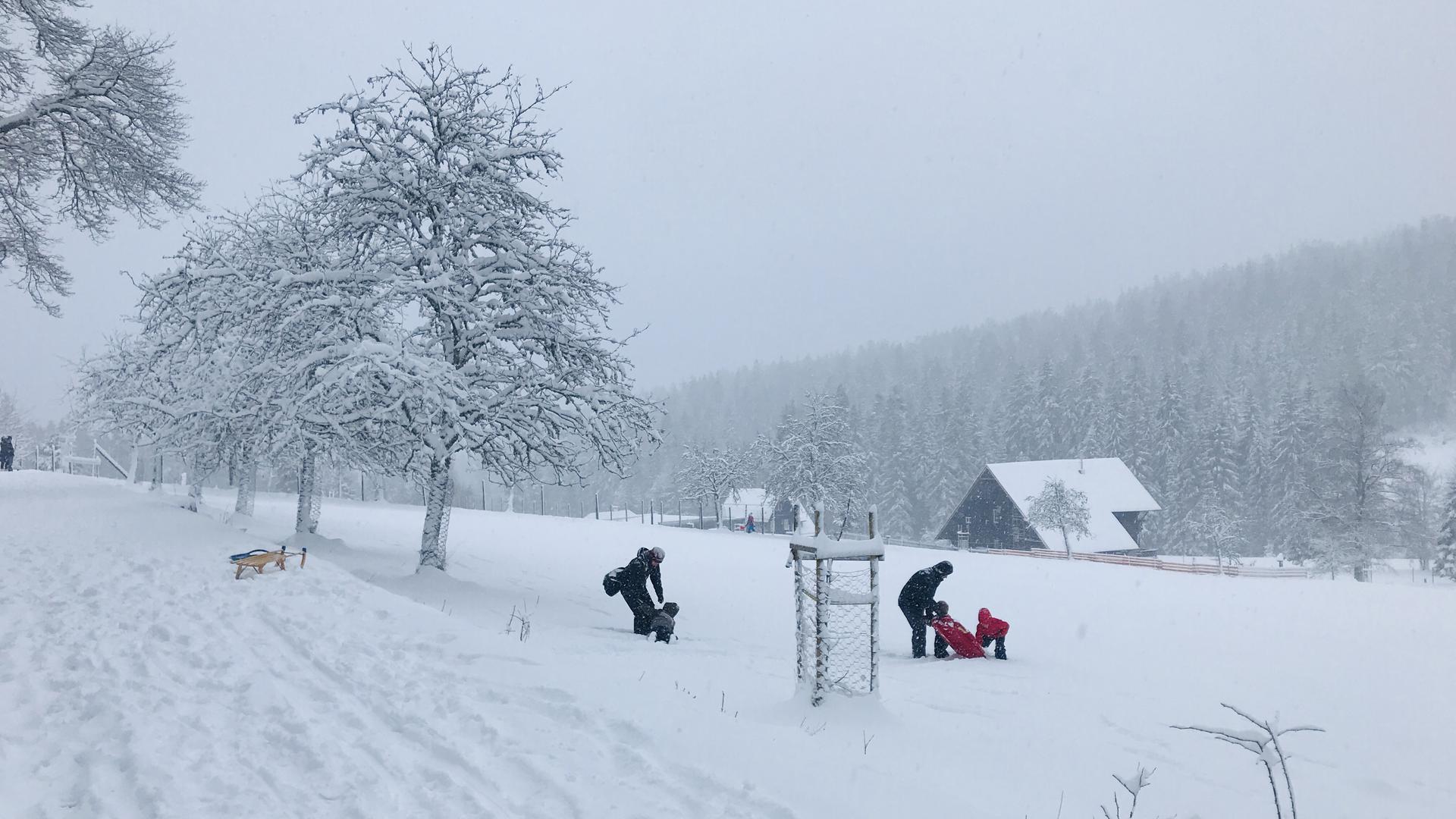 Auf der Schlittenwiese bei Kaltenbronn sind nur wenige Rodler unterwegs