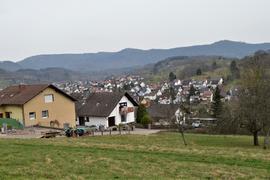 """Eigentümer machen Druck: Das Baugebiet """"Steinäcker"""" im Gaggenauer Stadtteil Michelbach soll wie anfangs geplant mit 14 Baugrundstücken umgesetzt werden, so die Forderung."""