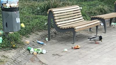 Parkbank, Müll, Ente