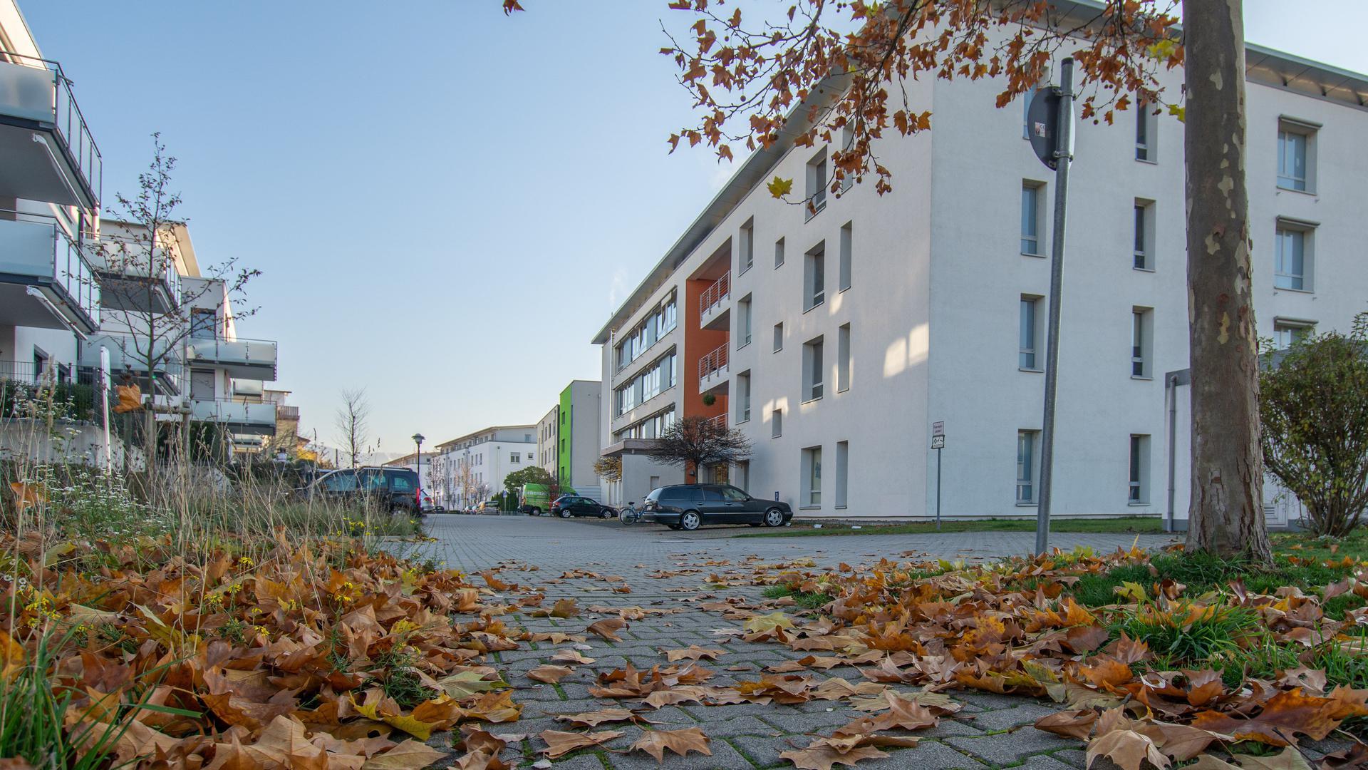 Großes Haus oder Heim im Herbst mit Herbstlaub