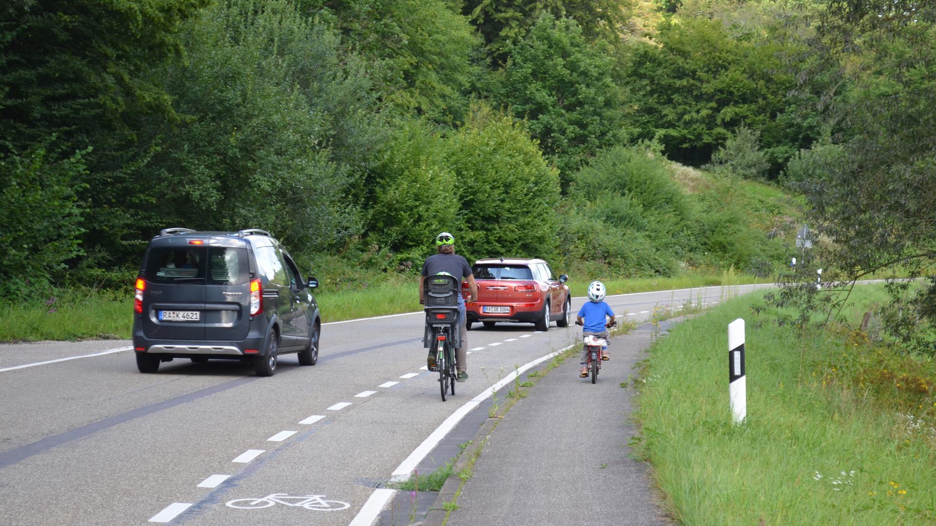 Erwachsener Radfahrer mit Kind im Kindersitz und radfahrendes Kind auf einem Fahrradstreifen, daneben fahren zwei Autos