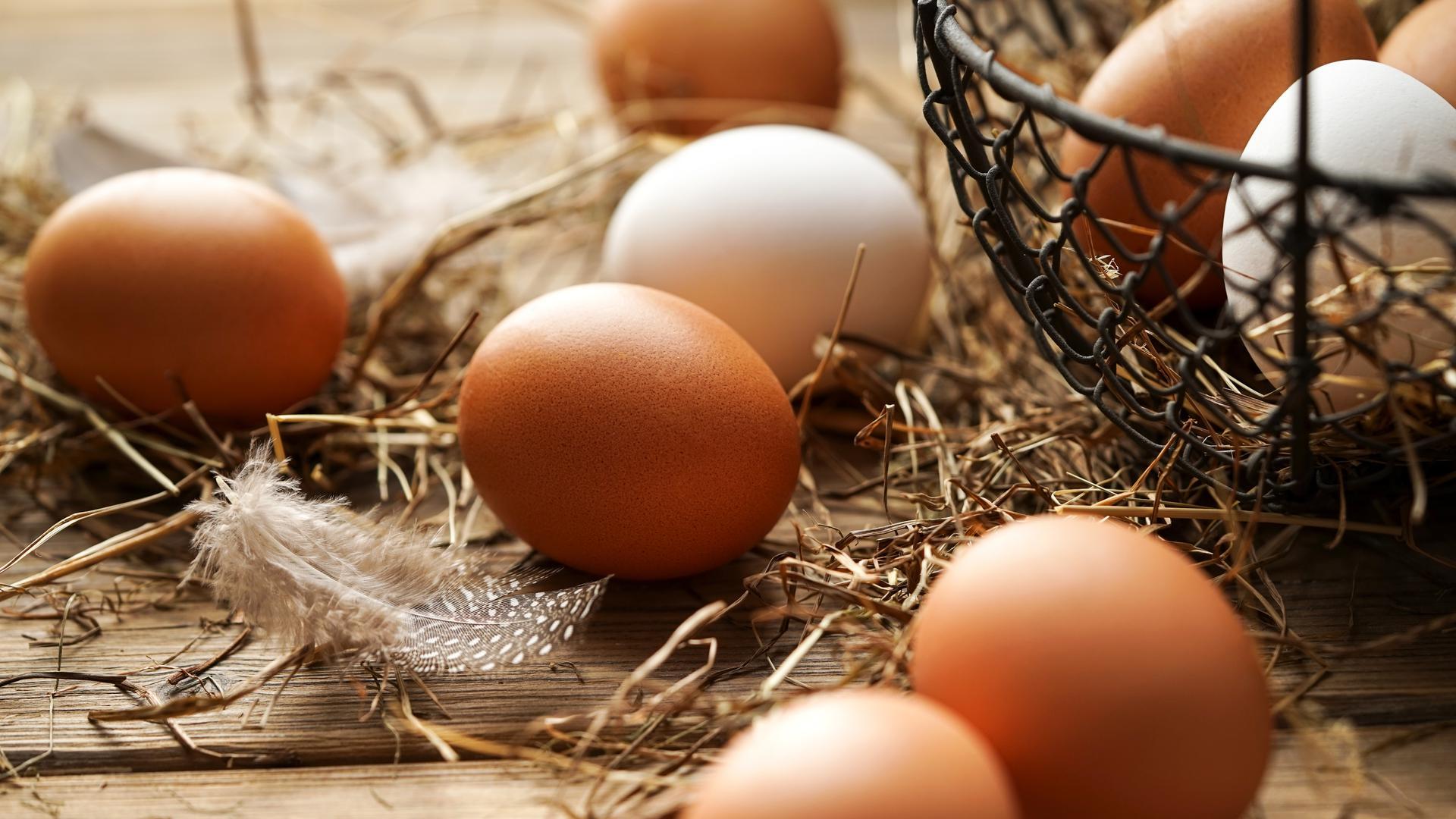 Frische Eier von Hühnern liegen auf einem Tisch.