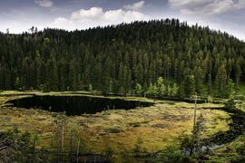 """Der """"Huzenbacher See"""", ein Überbleibsel der Gletscher aus der letzten Eiszeit"""