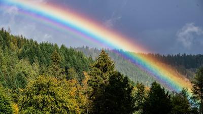 Über dem Schwarzwald bei Forbach hat sich ein Regenbogen gebildet.