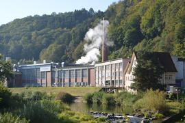 Firma, Dampf und Wald