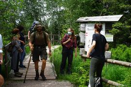 Wanderer und Teilnehmer einer Wanderung im Hochmoor.