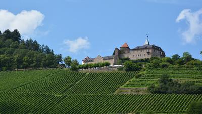 Weinberg und Burg