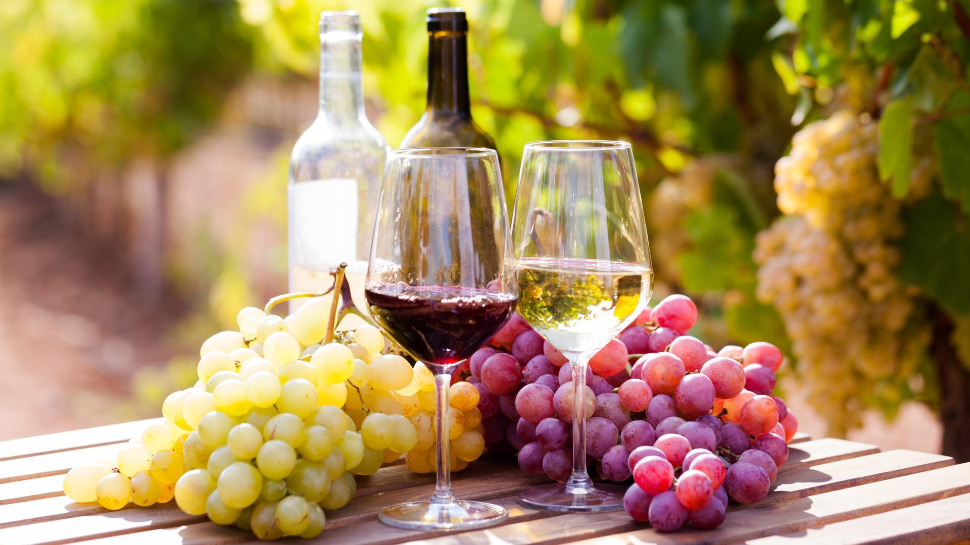 Weinflaschen, Weingläser und Trauben stehen auf einem Tisch.