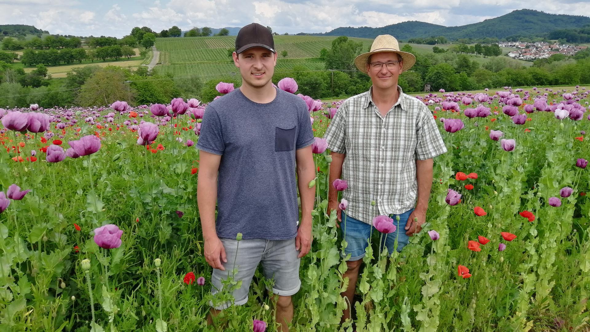 Peter (links) und Edgar Feißt aus Hohberg- Diersburg gehören zu den wenigen Anbauern von Blau- oder Schlafmohn in Deutschland.