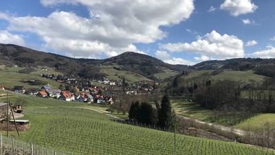 Frühling in Sasbachwaldener Tal 15.03.2018