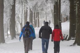 Wanderer  Mummelsee Rundweg Spaziergänger Ausflug Winter Winterwanderung