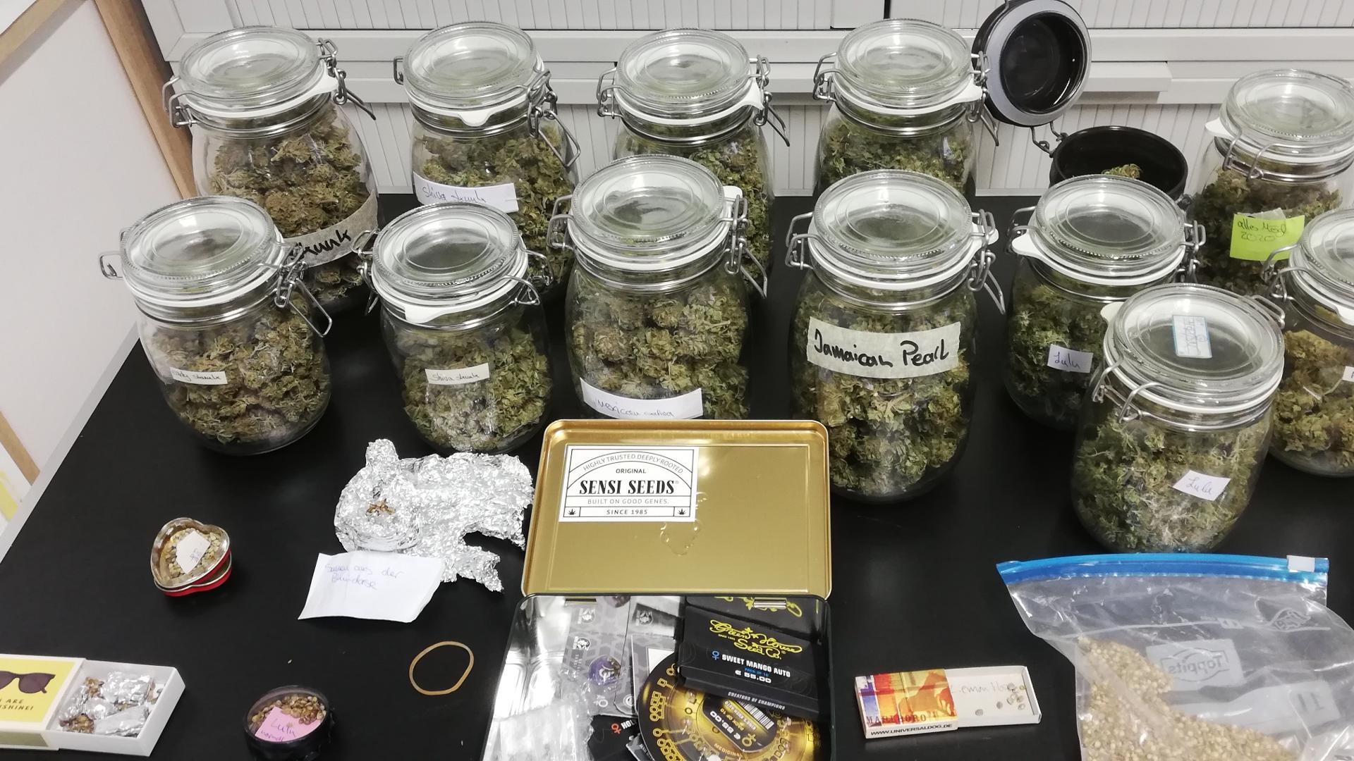 In Einmachgläsern verpackt: Bei einer Razzia bei einem Paar in Neuried-Altenheim fand die Polizei rund ein halbes Kilogramm Cannabisblüten.