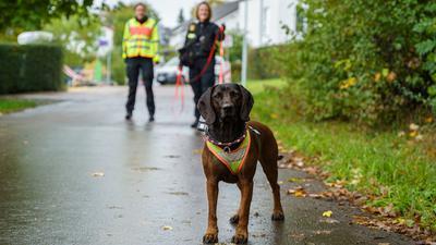Hund mit Polizeibeamtin in Göppingen im Trainingszentrum