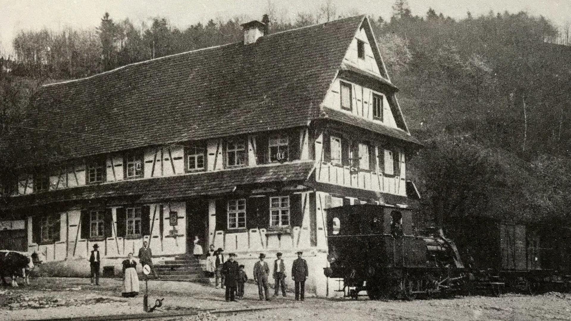 Rebstock Furschenbach