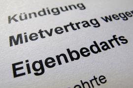 """""""Kündigung Mietvertag wegen Eigenbedarfs"""" steht auf einem Ausdruck (gestelltes Foto)."""