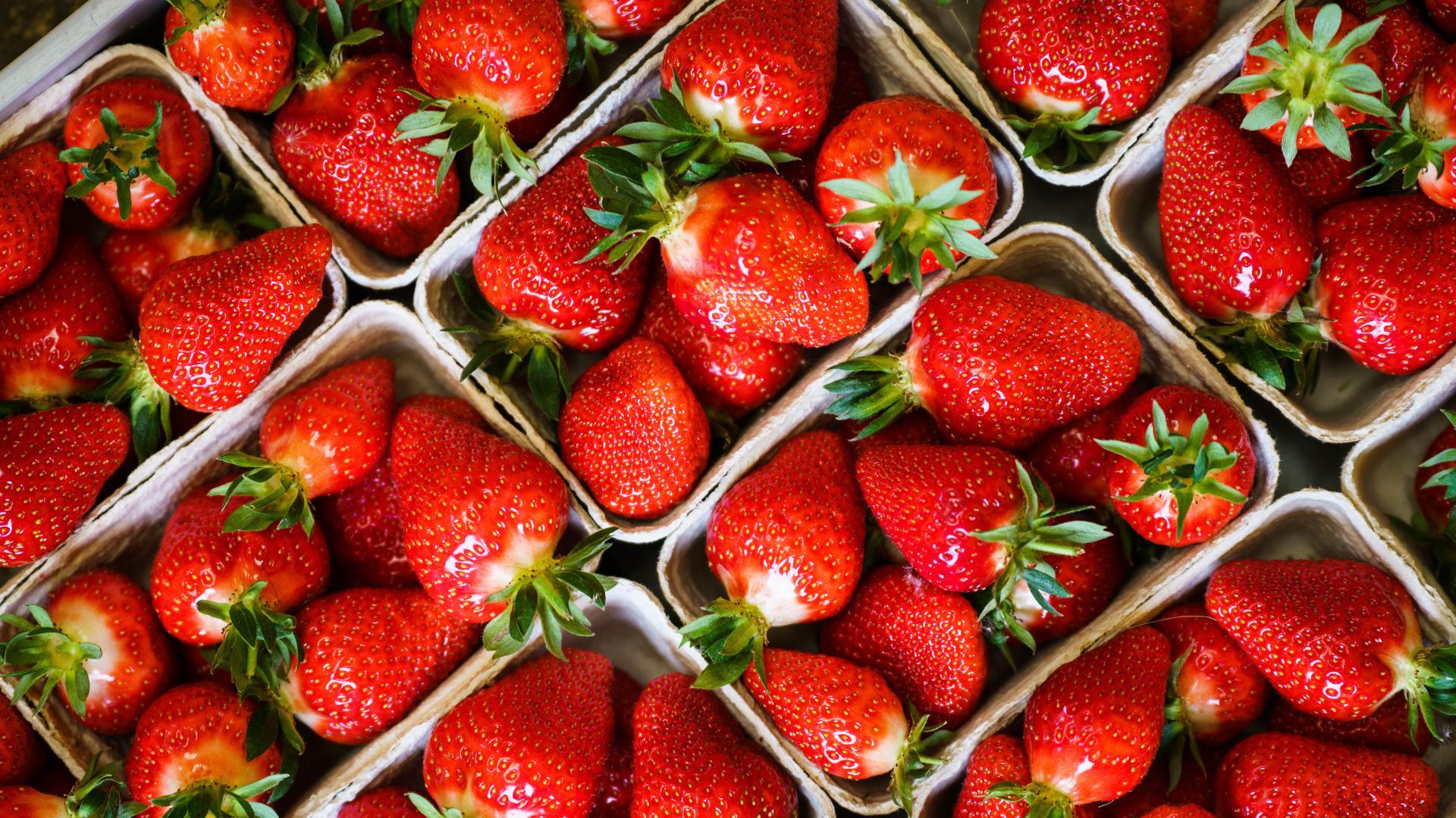 Mehrere Schalen mit Erdbeeren stehen nebeneinander
