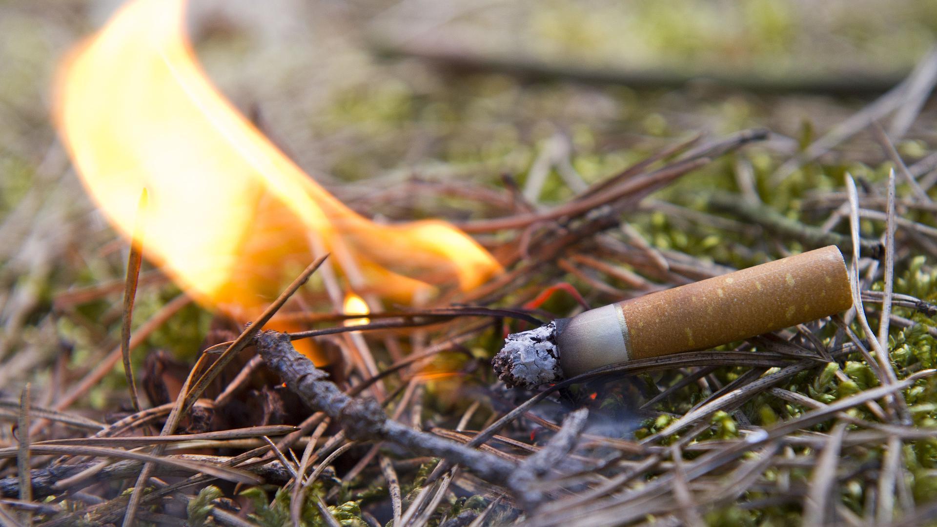 Eine achtlos weggeworfene Zigarettenkippe.