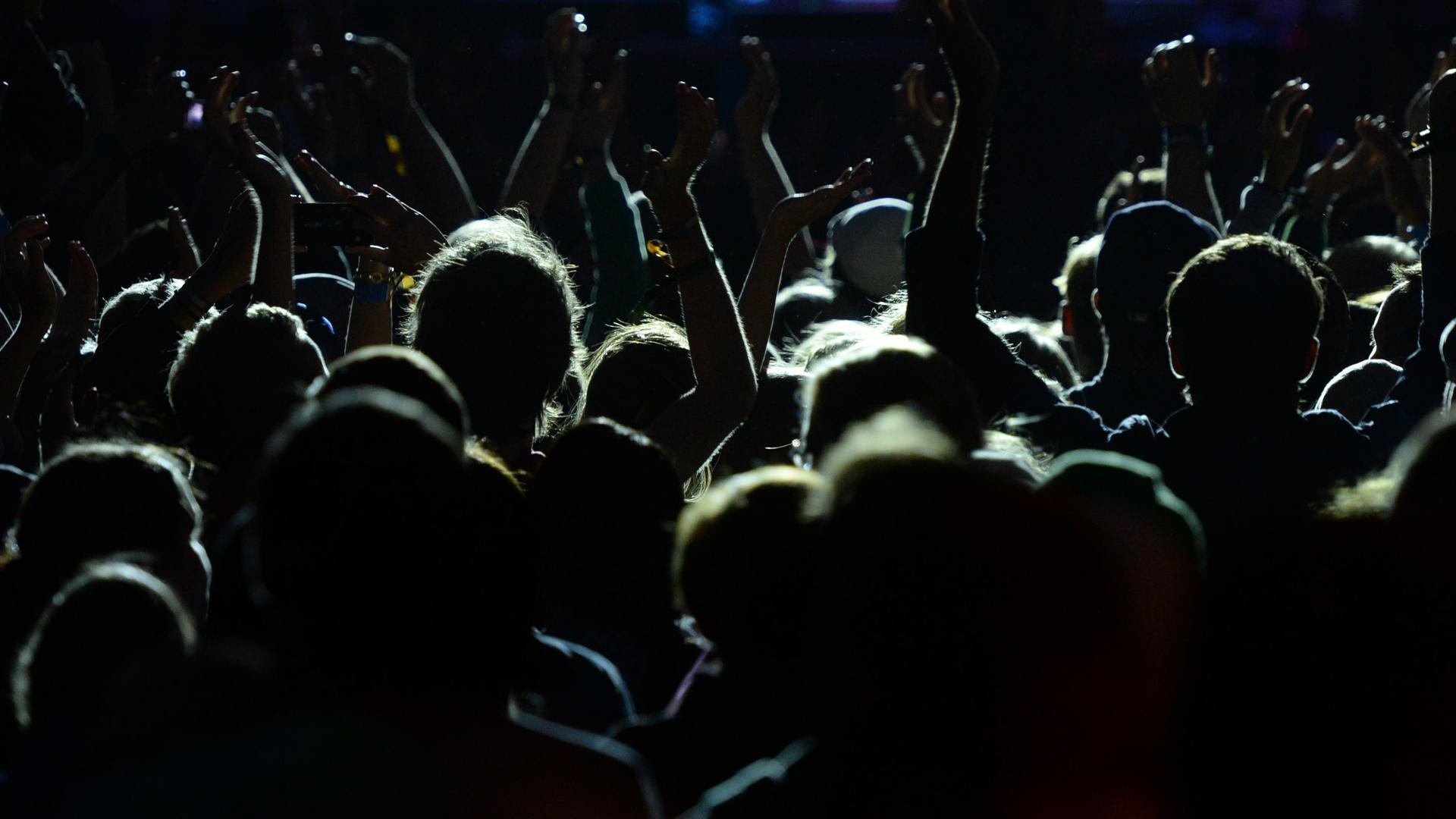"""ARCHIV- ILLUSTRATION- Besucher des Highfield Festivals am Störmthaler See in Großpösna (Sachsen) verfolgen am 15.08.2014 ein Konzert vor der Bühne. Foto: Hendrik Schmidt/dpa (zu """"18 Anzeigen nach sexuellen Belästigungen in Darmstadt"""" vom 31.05.2016) +++ dpa-Bildfunk +++"""