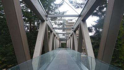 Skywalk des Nationalparkzentrums am Ruhestein Blick in den Wald