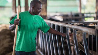 Kenianer Alex Meckense auf dem Huschlehof
