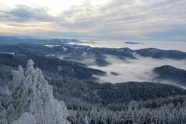 Winter 2010 Schnee Hornisgrinde Nebel Seebach Schmuckbild *