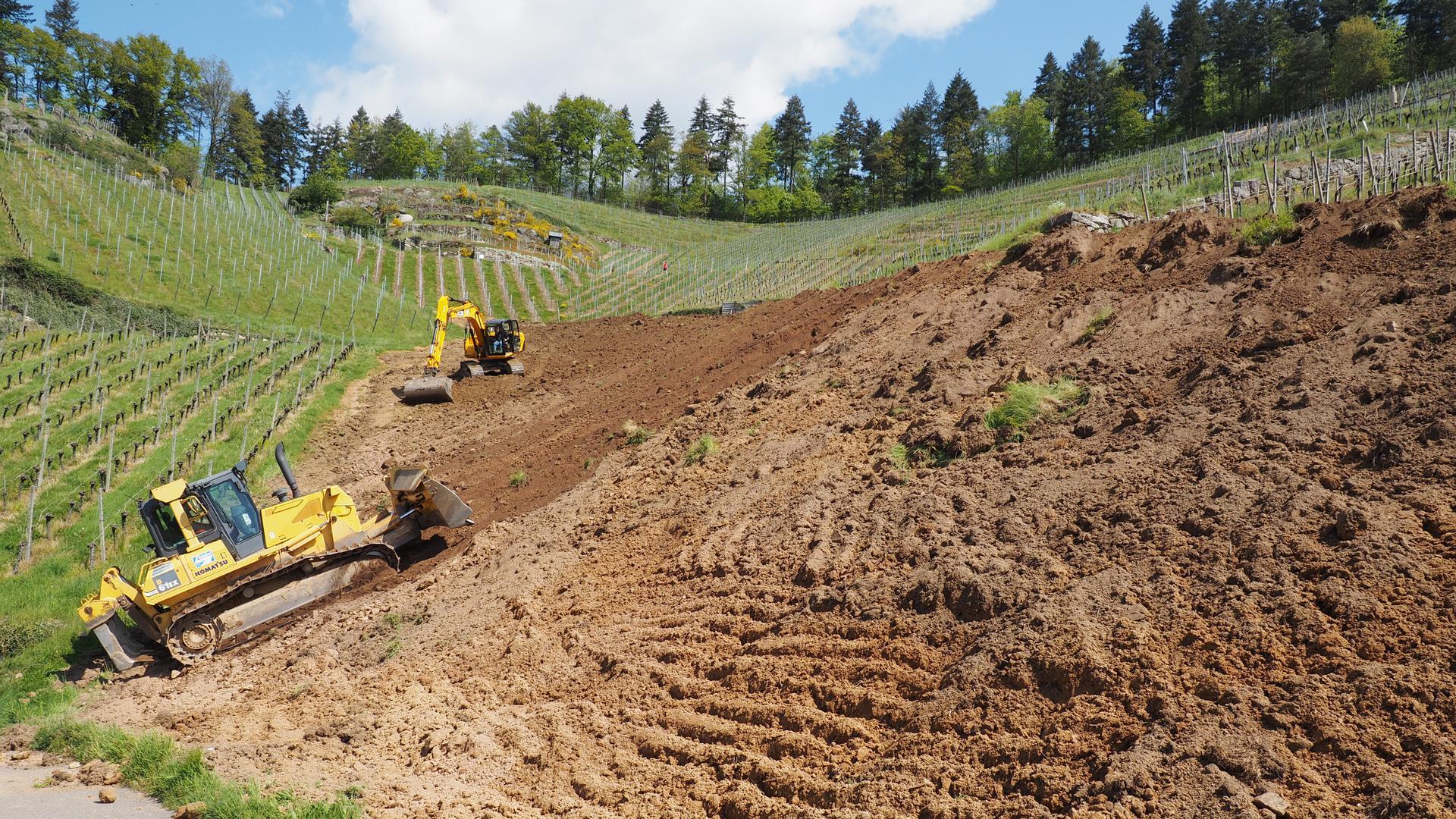 Schweres Gerät: Dieses Areal am Oberacherner Bienenbuckel lässt der Winzer Stephan Männle neu terrassieren. Danach wird die Fläche mit Scheurebe bestockt.