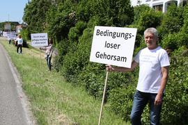 Querdenker Demo in Achern