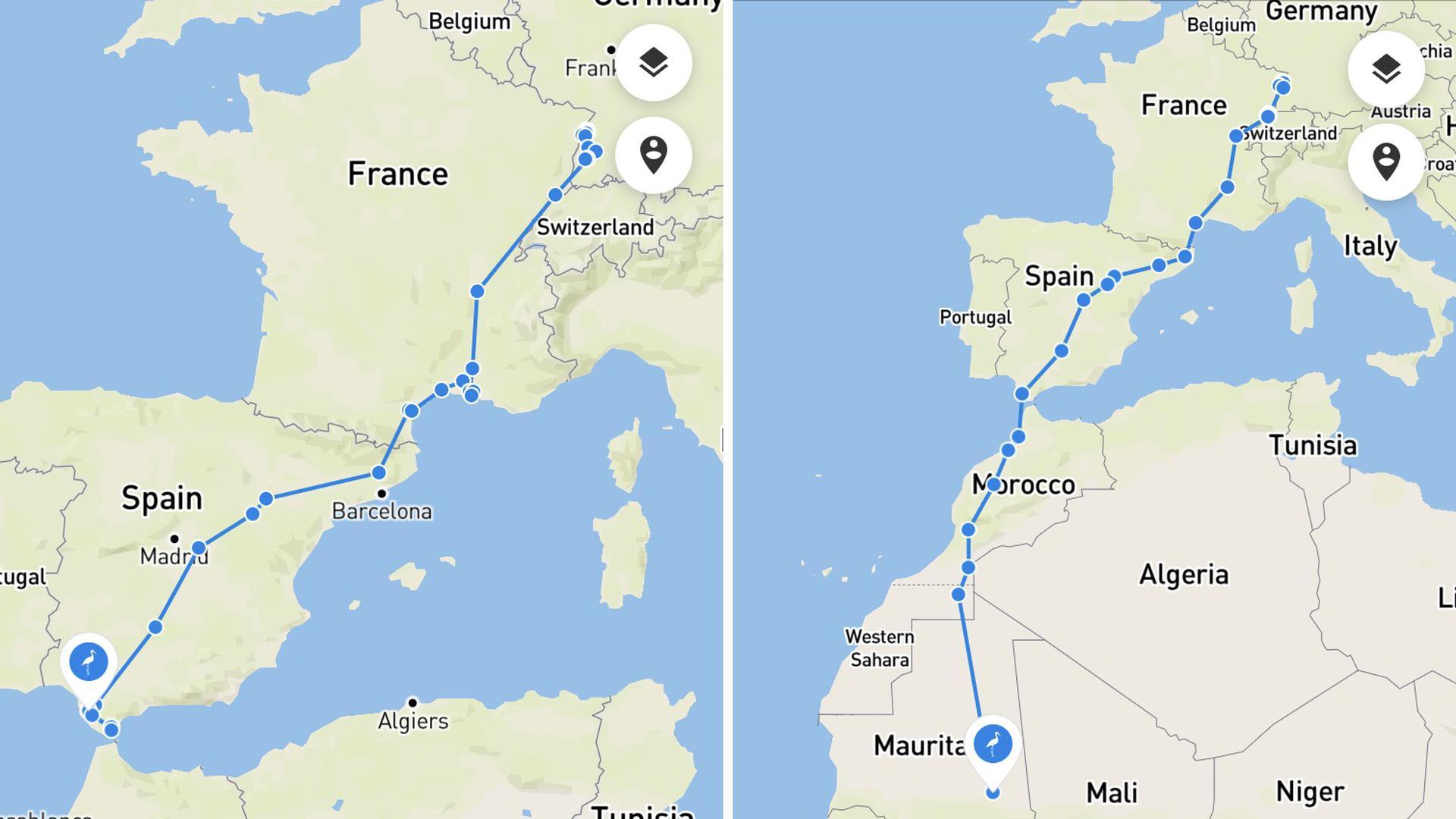 """Senderdaten: Während der Storch """"Wagshurst 5"""" in Spanien durch einen Stromschlag getötet wurde, hat es """"Wagshurst 4"""" bis nach Mauretanien und fast durch die gesamte Sahara geschafft."""
