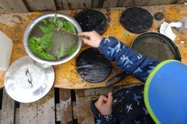 Ein Kind rührt mit einem Stöckchen in einer Schüssel voller Wasser und grünen Blättern.