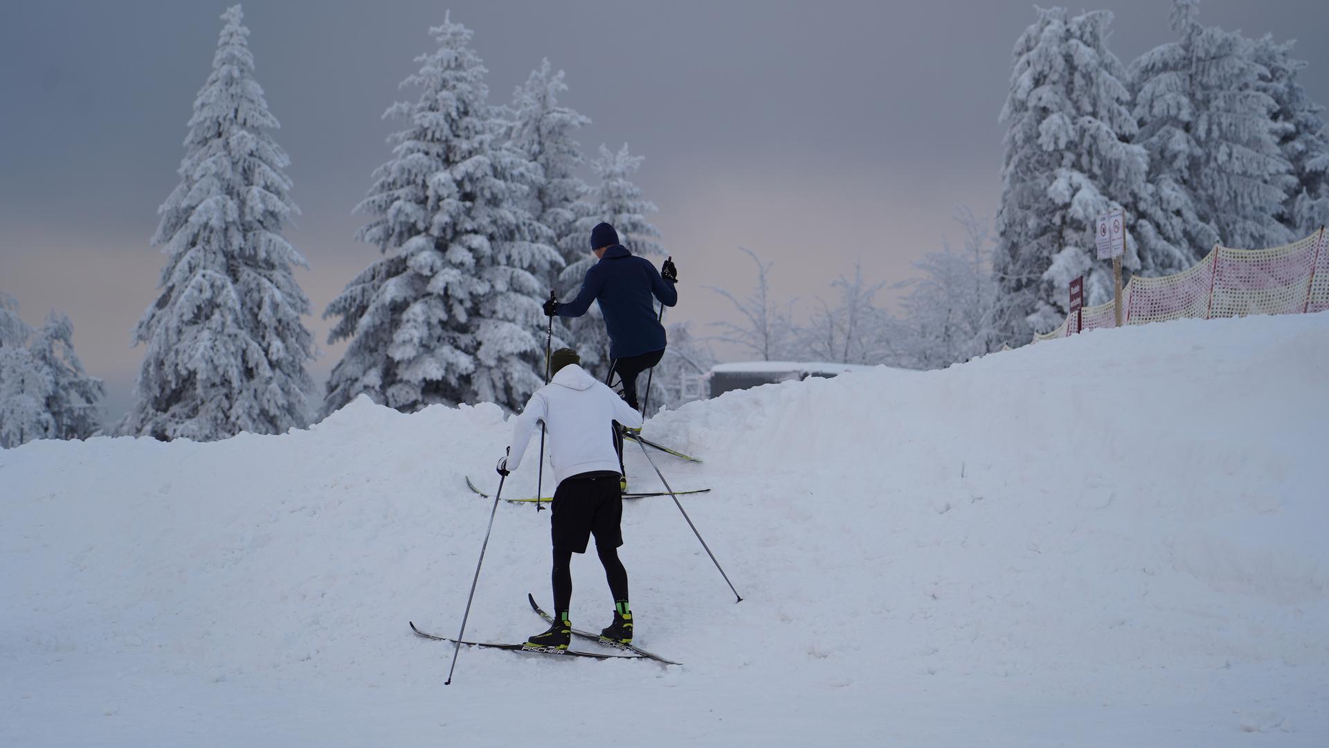Zwei Langläufer auf dem Weg zur Loipe am Seibelseckle.