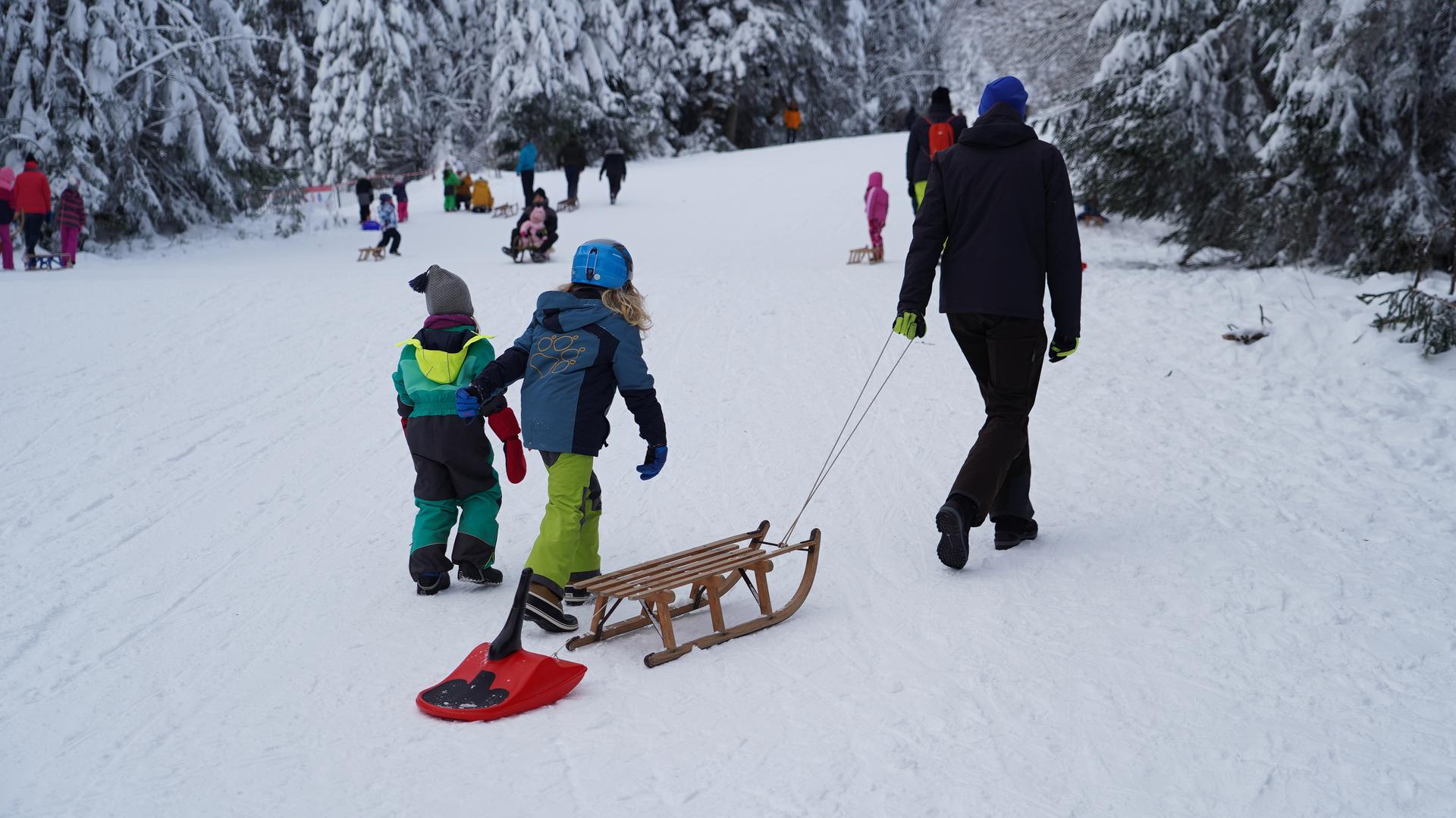 Winter-Ausflügler mit ihren Schlitten am Rodelhang Ruhestein.