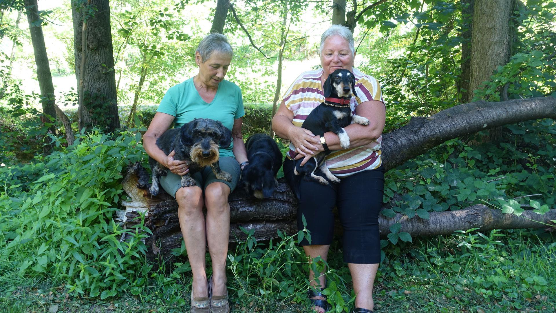 Zwei Frauen mit drei Dackeln unter Bäumen.