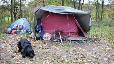 In einem Zelt auf einer Obstwiese bei Waldulm leben zwei Menschen und ein Hund. Sie hoffen, nicht noch einen zweiten Winter draußen verbringen zu müssen.