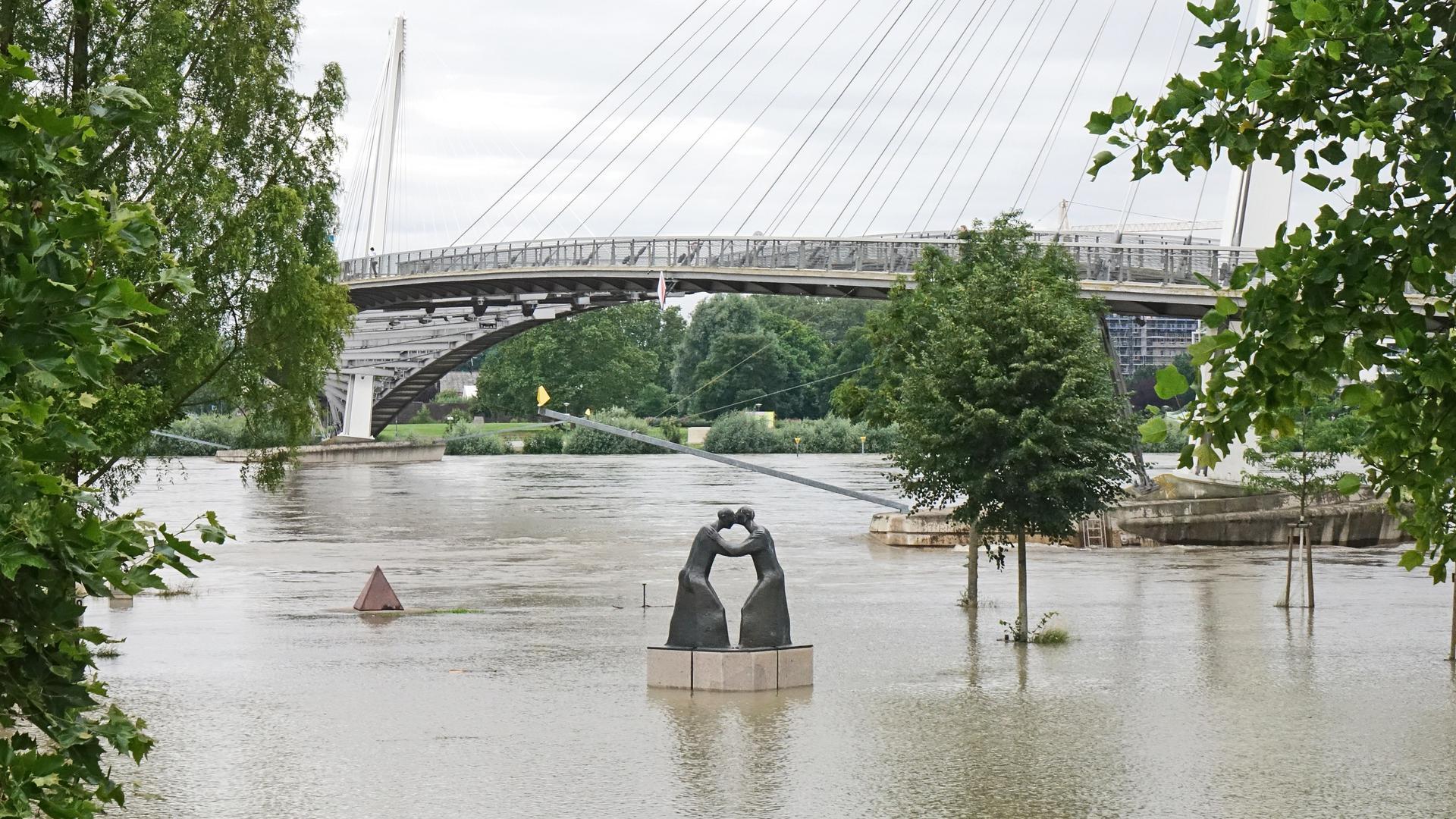 Rheinvorland Kehl mit Passerelle unter Wasser