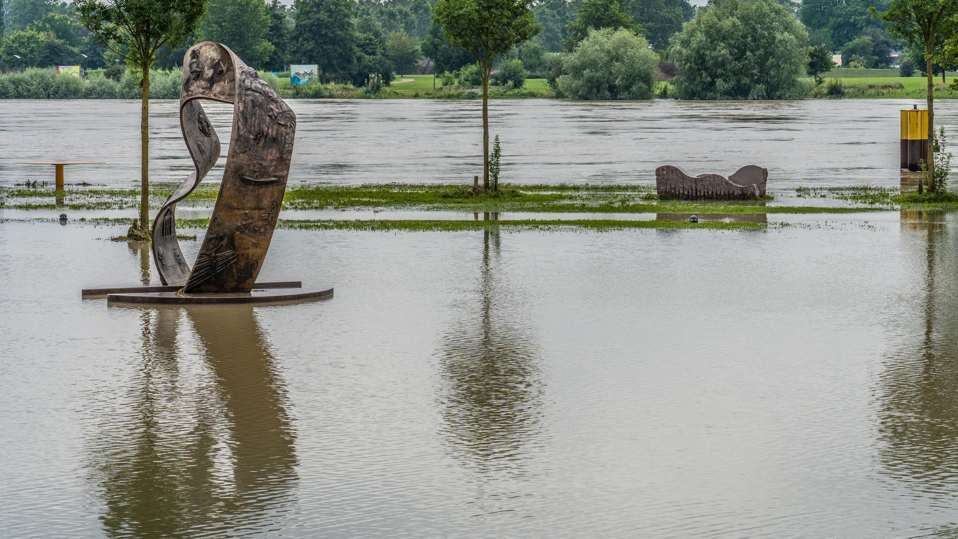 Eine Wasserfläche: Das Hochwasser des Rheins flutete bei Kehl bis ins Rheinvorland. Das lockte am Wochenende viele Schaulustige.