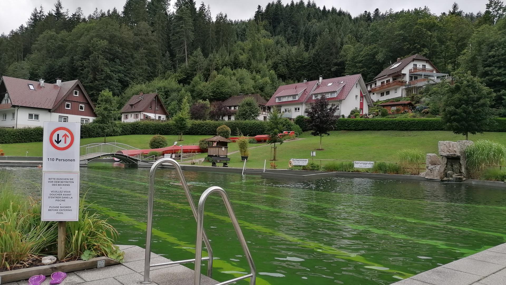 Schwimmerbecken im Naturerlebnisbad in Ottenhöfen